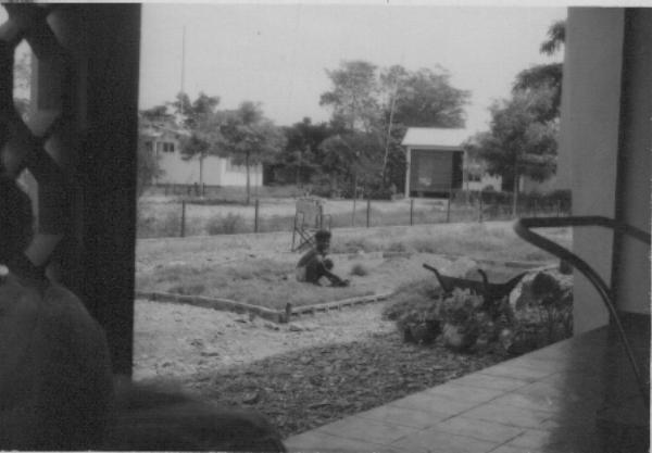 O jardim à frente da casa a tomar forma
