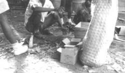 Preparação das cargas de dinamite
